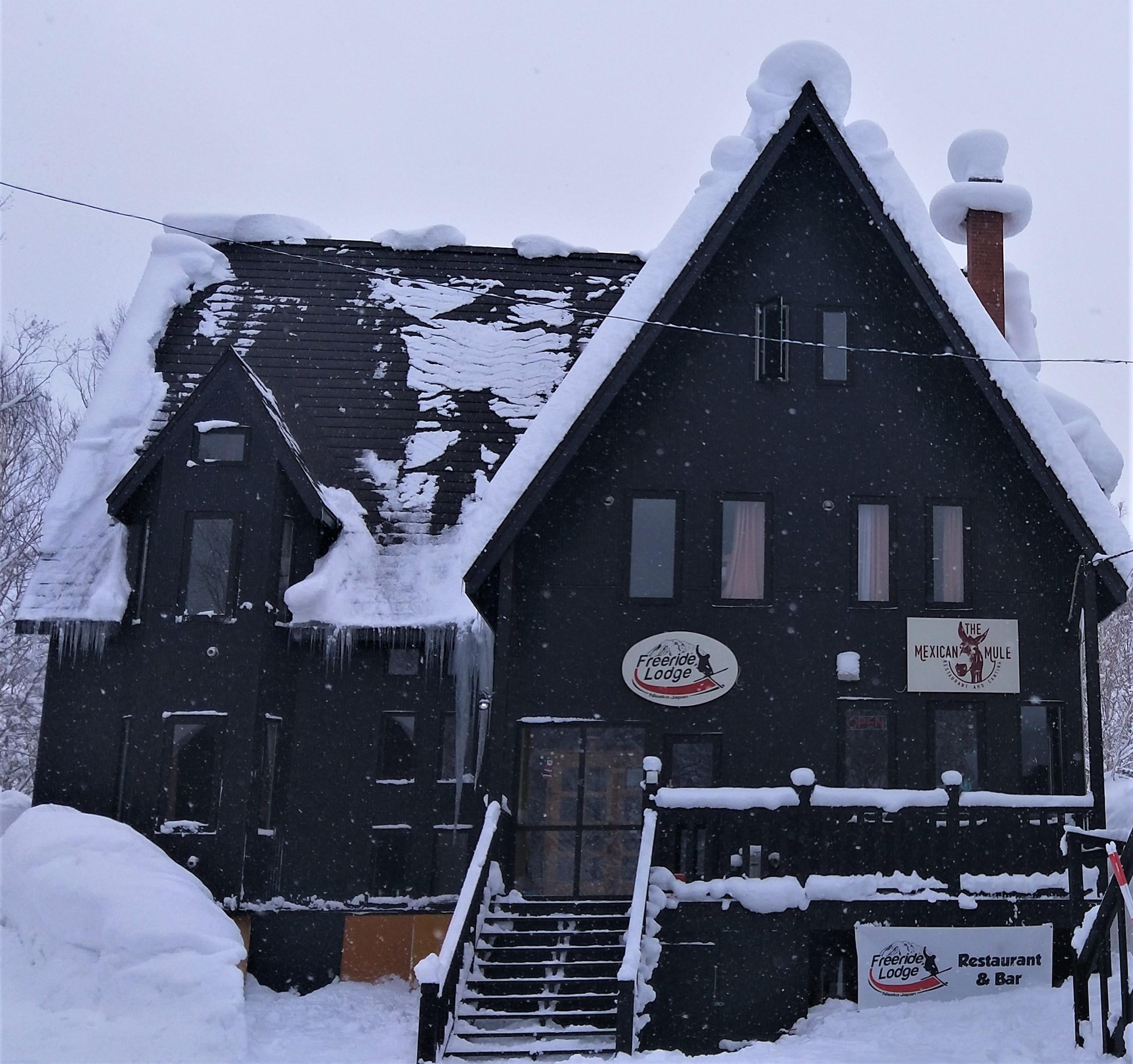 Niseko Backpacker - Hostel - Accommodation