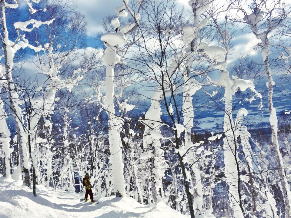 Skiing and snowboarding Niseko Japan