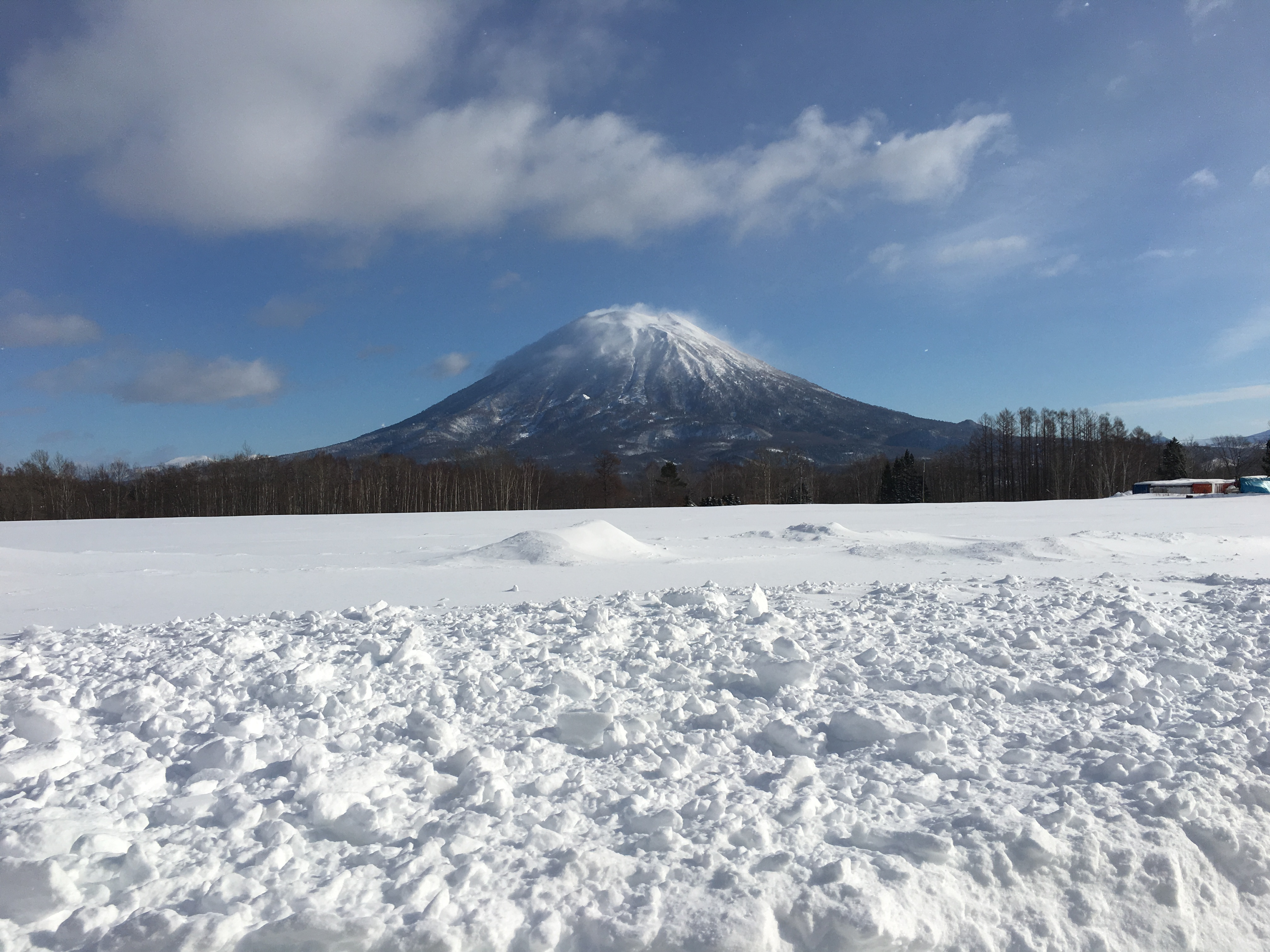 What insurance should I get for a Niseko snow Holiday