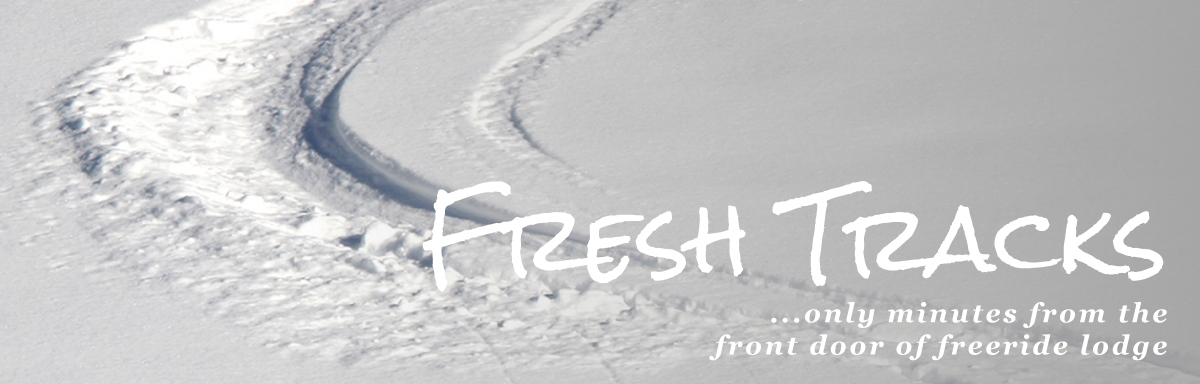 Fresh tracks... only minutes from the front door of freeride lodge